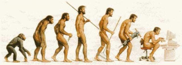 El punto clave de la evolución